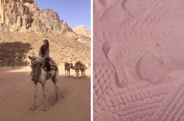 Camel and prints